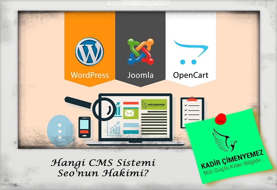 Hangi CMS Sistemi Seo'nun Hakimi?